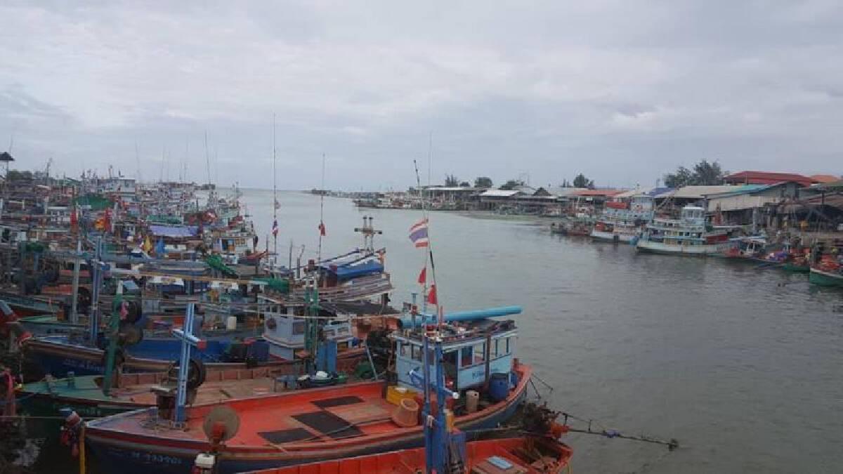 อีก 3 เดือนโลกขาดอาหารจี้ไทยพลิกวิกฤติเป็นโอกาส