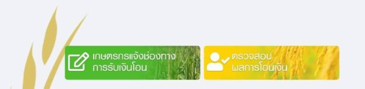 www.เยียวยาเกษตรกร.com ตรวจสอบสิทธิ์ ตรวจสอบสถานะ ผลการโอนเงิน แบบไหนได้เงินชัวร์