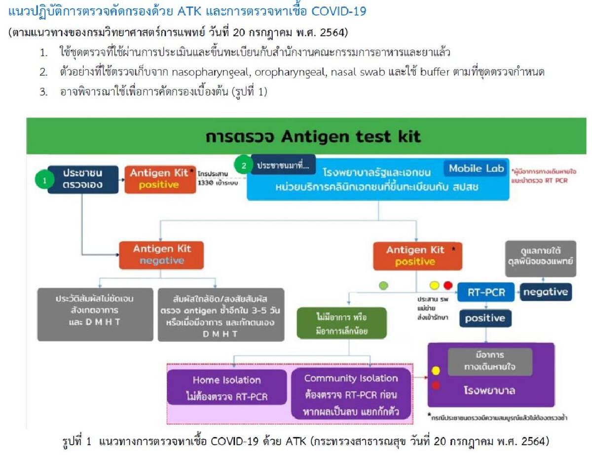 การตรวจ Antigen Test Kit