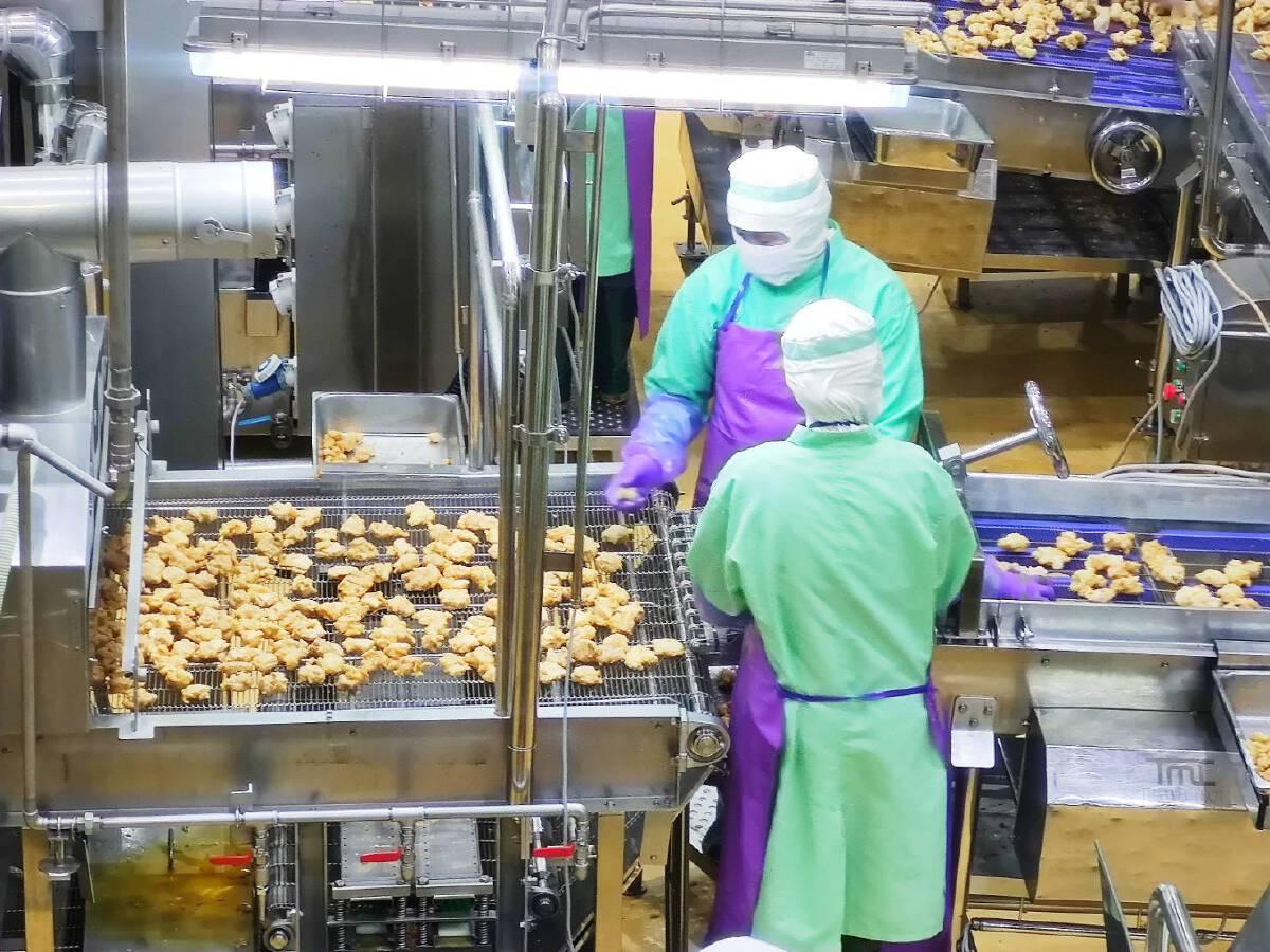 อุตสาหกรรมไก่เนื้อไทยมาตรฐานยุโรป ชูสวัสดิภาพสัตว์-สวล.สู่ความยั่งยืน